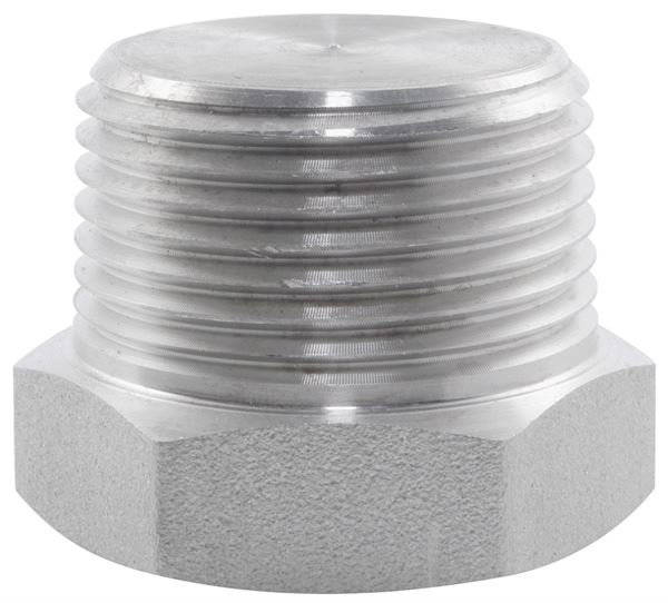 BSPT Hexagon Plug 3000LB 316 Stainless Steel